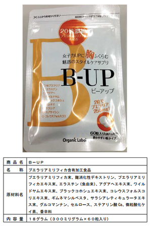 B-UP1.png