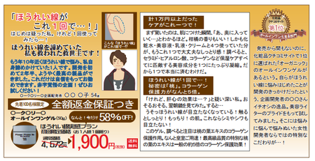 折込みチラシ調査2015(事例2b).png