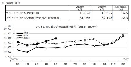 支出額・推移(2020.5).png