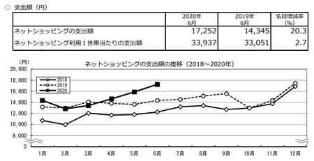 支出額・推移(2020.6).png